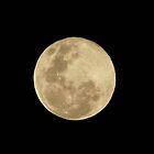 Full Moon by SophiaDeLuna