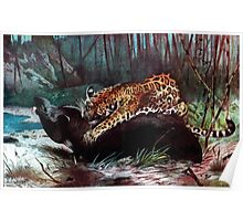 Friedrich Wilhelm Kuhnert Americana 1920 Jaguar South American Jaguar and Tapir Poster