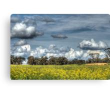 Canola & Clouds Canvas Print