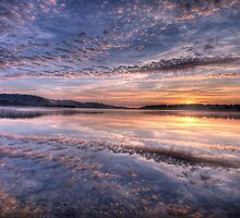 Pink Lace - Narrabeen Lakes, Sydney Australia - The HDR Experience by Philip Johnson