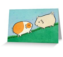 Two Guinea-pigs on a Hill  Greeting Card