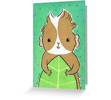 Guinea-pig with Green Leaf Greeting Card