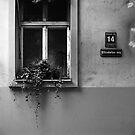 14 Elizabetes Iela, Rīga by Roberts Birze