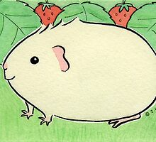 Cream Guinea-pig with Strawberries by zoel