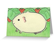 Cream Guinea-pig with Strawberries Greeting Card