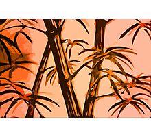 orange geometric bamboo Photographic Print