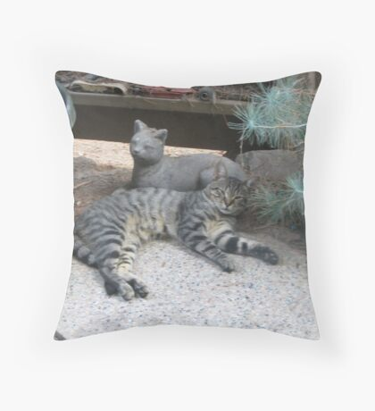 I'm Mellow Throw Pillow