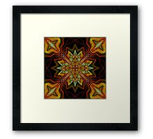 Too Much Noise Framed Print