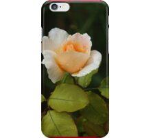 Apricot rose iPhone Case/Skin