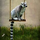 Ringtailed lemur iPhone case by Lissywitch