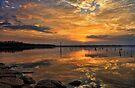 A Glorious Night by Carolyn  Fletcher