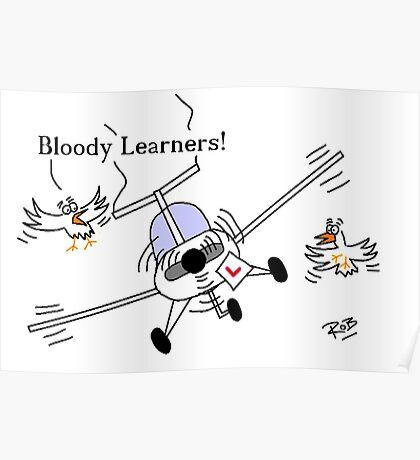 Flying Learner Poster