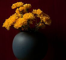 yellow flowers by julien  oncete