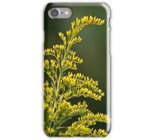 Wild Ones iPhone Case/Skin