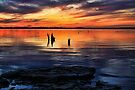 A Colorful Sunset by Carolyn  Fletcher