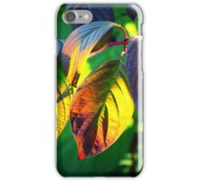 Autumn leaves iPhone Case/Skin