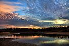 Dawn In The Cove by Carolyn  Fletcher