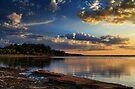Evening Light by Carolyn  Fletcher