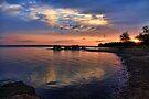 Morning Light by Carolyn  Fletcher