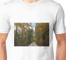 Colorful Pruitt's Path Unisex T-Shirt