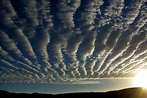 clouds in stripes 2 by Martina  Stoecker