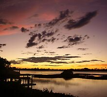 Brown, rose and gold sunset by ♥⊱ B. Randi Bailey