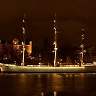 The Af Chapman by night by kostolany244