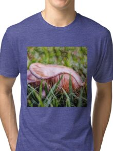 Abstract fungus in grass Tri-blend T-Shirt