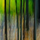 Abstracting the Landscape by Randall Talbot