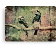Horn-bills 2 Canvas Print
