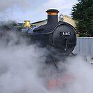 Letting Off Steam by sbarnesphotos