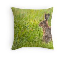 Brown Hare II Throw Pillow