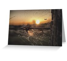 Outback Living Greeting Card