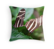 Mating Zebra Longwing - Heliconius charithonia Throw Pillow