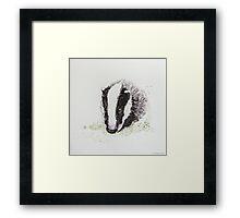 Swift Art, Badger Framed Print