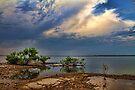 Lakeshore View by Carolyn  Fletcher