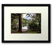 a touch of magic Framed Print