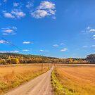 Autumn Road by Veikko  Suikkanen