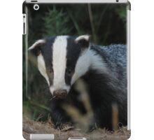 Badger iPad Case/Skin