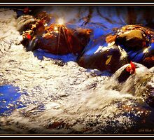Autumn Rush by Deb  Badt-Covell