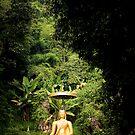 The Outdoor Thai Statue by Marnie Hibbert
