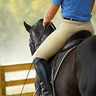 Black Beauty Dressage by BeeVaw