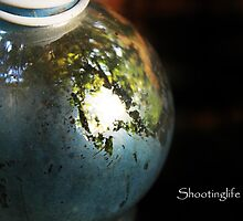 contained world by shootinglife