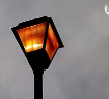 Nightlight by Scott Mitchell