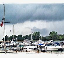 Storm Over Lake Erie by Joan  Minchak