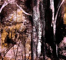 wood ...... silver birch#6 by banrai