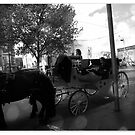 Carriage and Horse by Nic3ky