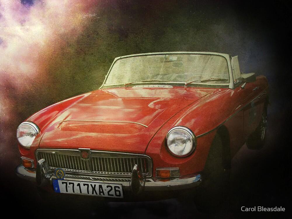 Red Dream by Carol Bleasdale