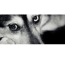 The Eyes Photographic Print