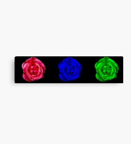 Roses - Red, Blue, Green Canvas Print